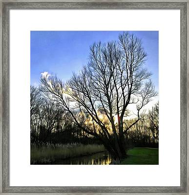 Lonely Tree 2 Framed Print