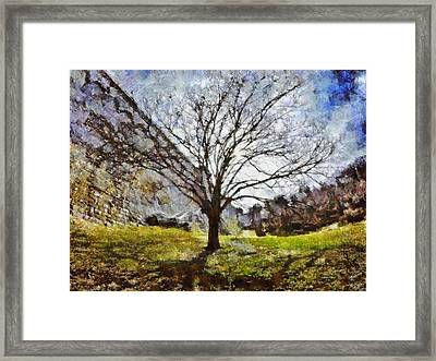 Framed Print featuring the painting Lonely Tree by Derek Gedney