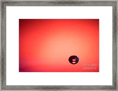 Lonely Water Drop Framed Print