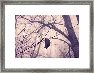 Lonely Winter Leaf Framed Print