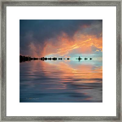 Lonesome Bird Framed Print by Jerry McElroy