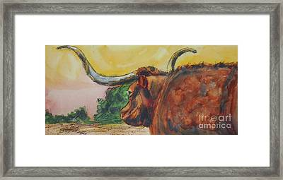 Lonesome Longhorn Framed Print by Ron Stephens