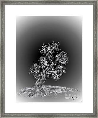 Lonesome Me Framed Print by John Krakora