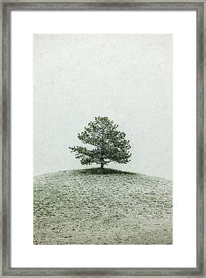 Lonesome Tree Stands Alone In A Snow Storm Framed Print
