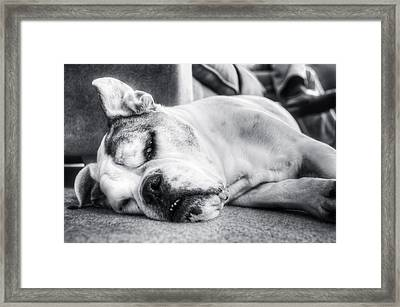Long Day Framed Print by Andrew Kubica
