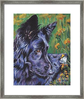 Long Hair Black German Shepherd Framed Print
