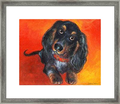 Long Haired Dachshund Dog Puppy Portrait Painting Framed Print by Svetlana Novikova