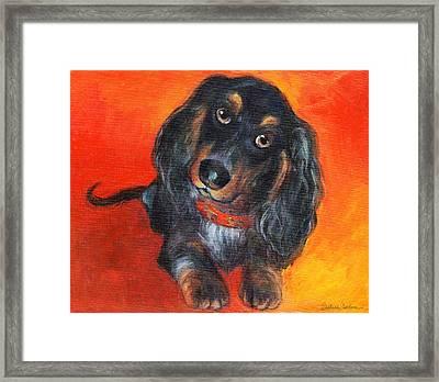 Long Haired Dachshund Dog Puppy Portrait Painting Framed Print by Svetlana Novikova