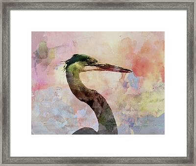 Long Neck 3 Framed Print by Marty Koch