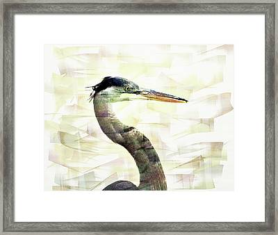 Long Neck 4 Framed Print by Marty Koch