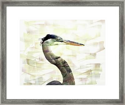 Long Neck 4 Framed Print