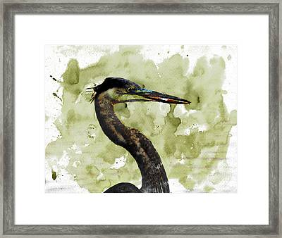 Long Neck 5 Framed Print by Marty Koch