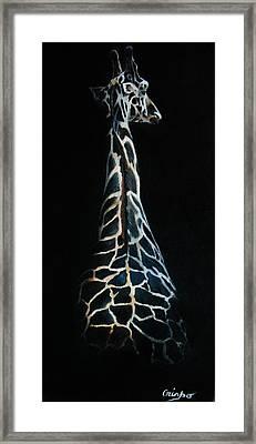 Long Neck Framed Print