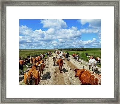 Long Road Ahead Framed Print by Crystal Socha