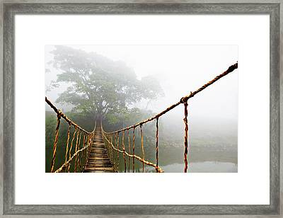Long Rope Bridge Framed Print