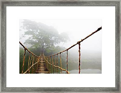Long Rope Bridge Framed Print
