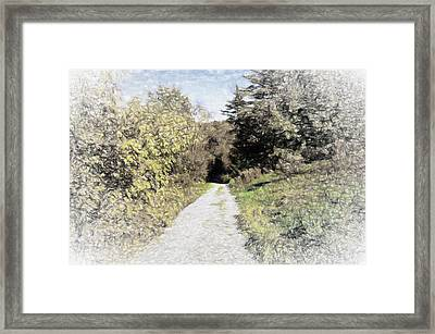 Long Trail Framed Print