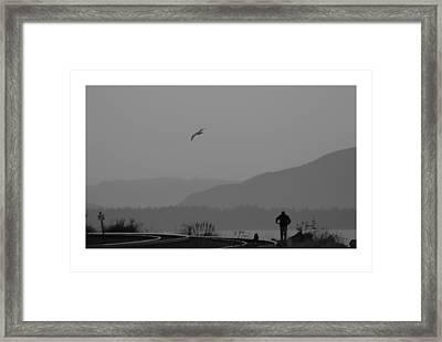 Long Walk Framed Print by J D Banks