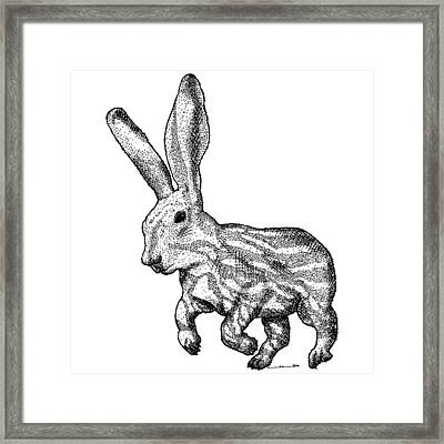 Longear Framed Print by Karl Addison