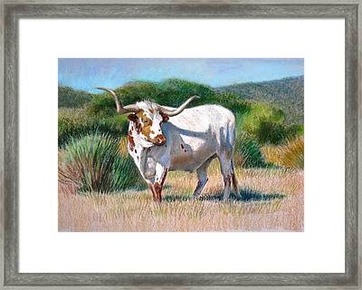 Framed Print featuring the painting Longhorn Bull by Sue Halstenberg
