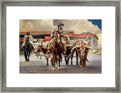Longhorn Parade Framed Print by Kelley King