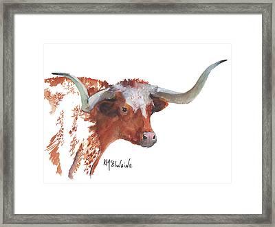 A Texas Longhorn Portrait Framed Print