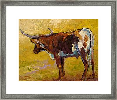 Longhorn Study Framed Print by Marion Rose
