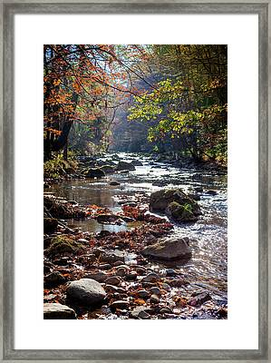 Framed Print featuring the photograph Longing For Home by Karen Wiles