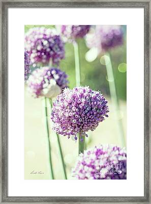 Framed Print featuring the photograph Longing For Summer Days by Linda Lees