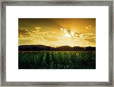 Framed Print featuring the photograph Longmont Summer Skies 2 by John De Bord