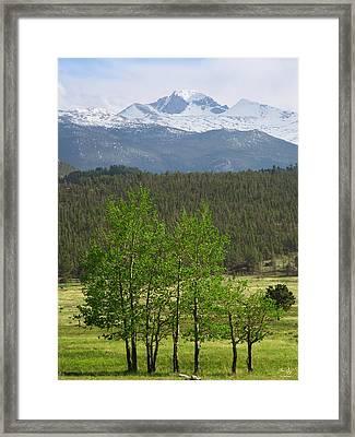 Longs Peak From Moraine Park - Spring Framed Print by Aaron Spong
