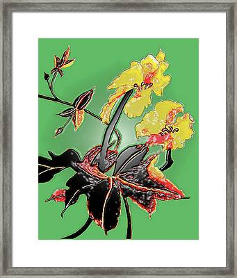 Loofah Gourd Flower - Three Dimensional Framed Print