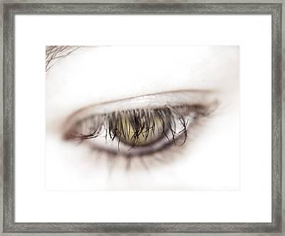 Look Away Framed Print by Kelly Jade King