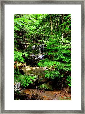Look Closely Framed Print by Lisa Wooten