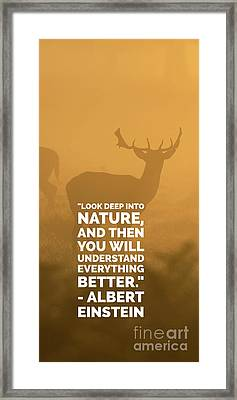 Look Deep Into Nature Phone Case Framed Print