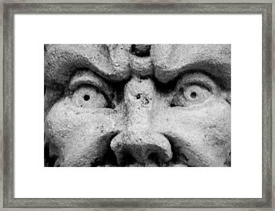 Look Into My Eyes Framed Print