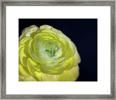 Look Into My Heart Framed Print