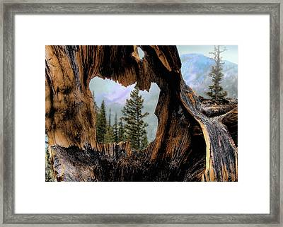 Look Into The Heart Framed Print
