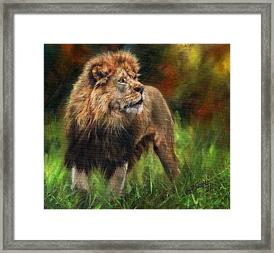 Framed Print featuring the painting Look Of The Lion by David Stribbling