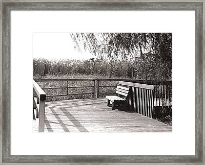 Look Out Point Framed Print by Eric Belford