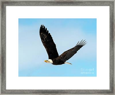 Look To The Sky Framed Print by Mike Dawson
