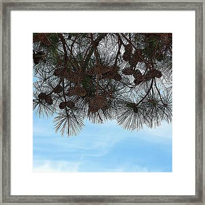 Framed Print featuring the photograph Look Up- Fine Art by KayeCee Spain