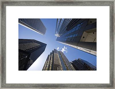 Look Way Up Framed Print by Mary Lane