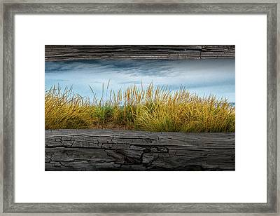 Looking At Beach Grass Between The Fence Rails Framed Print