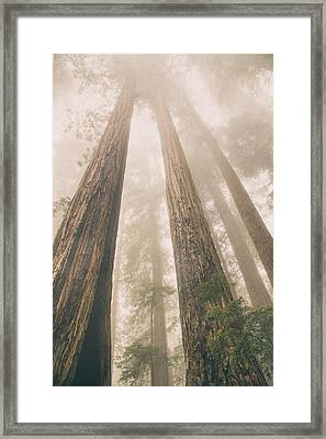 Looking At Giants Framed Print