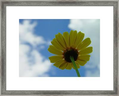 Looking At The Sky Framed Print by Ilias Kordelakos