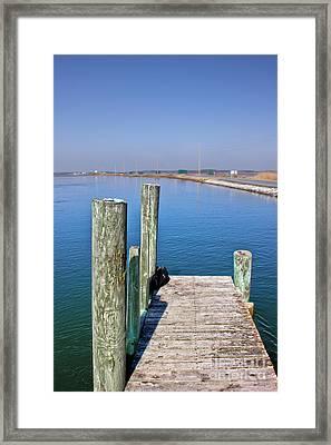 Looking At Wallop Island Framed Print