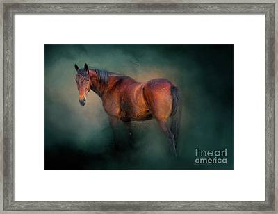 Looking Back Framed Print by Michelle Wrighton