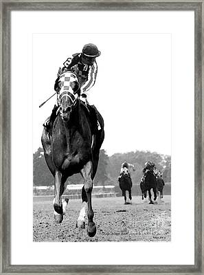 Looking Back, 1973 Secretariat, Stretch Run, Belmont Stakes Framed Print by Thomas Pollart