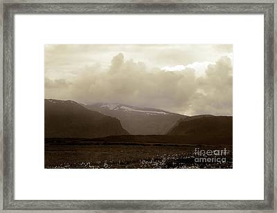 Framed Print featuring the photograph Looking Back by Thomas Bomstad